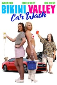 Bikini Valley Car Wash Cda Lektor PL